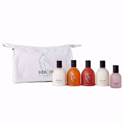 Picture of DDC28 Canvas Collection